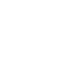 Traditional Real Christmas Trees