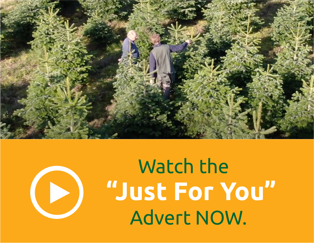 Watch the Just For You Advert